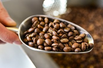 hand roasted coffee, made in house